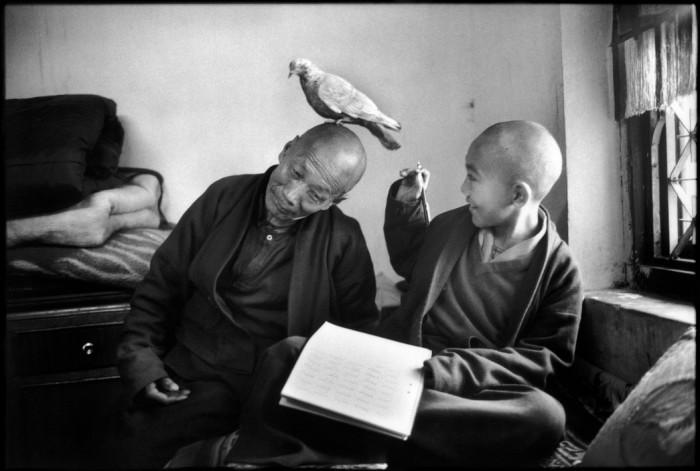 Shechen Monastery. Tulku Khentrul Lodro Rabsel com seu tutor Lhagyel. Nepal, 1996. Foto: © Martine Franck/Magnum Photos
